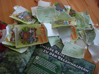 Schutz für den Regenwald